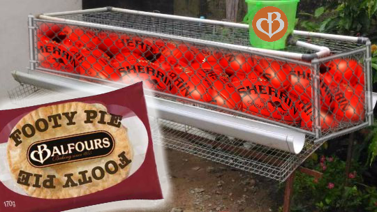 Balfours footy pies