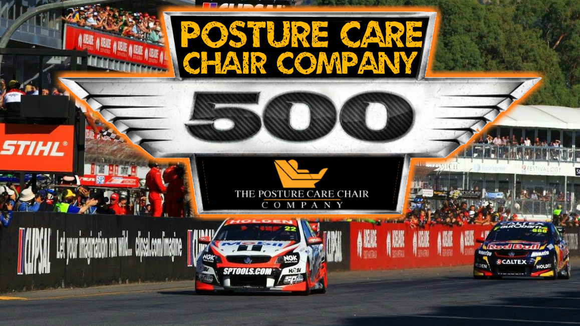 Posture Care Chair 500